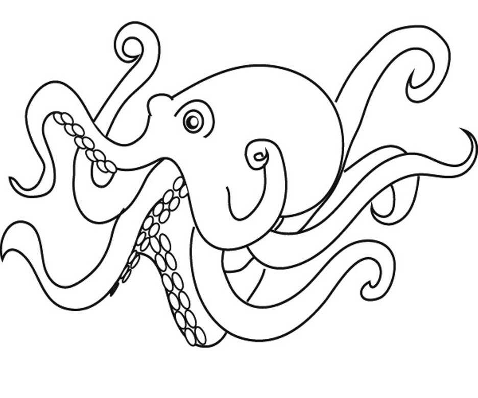 cute octopus coloring page funny octopus coloring pages for kids cute octopus coloring page