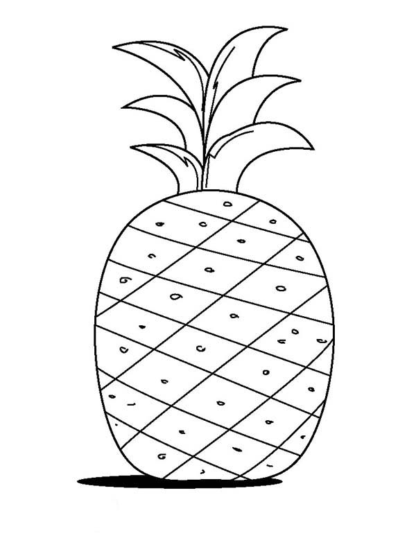 cute pineapple coloring page fruits drawing for kids at paintingvalleycom explore coloring pineapple page cute