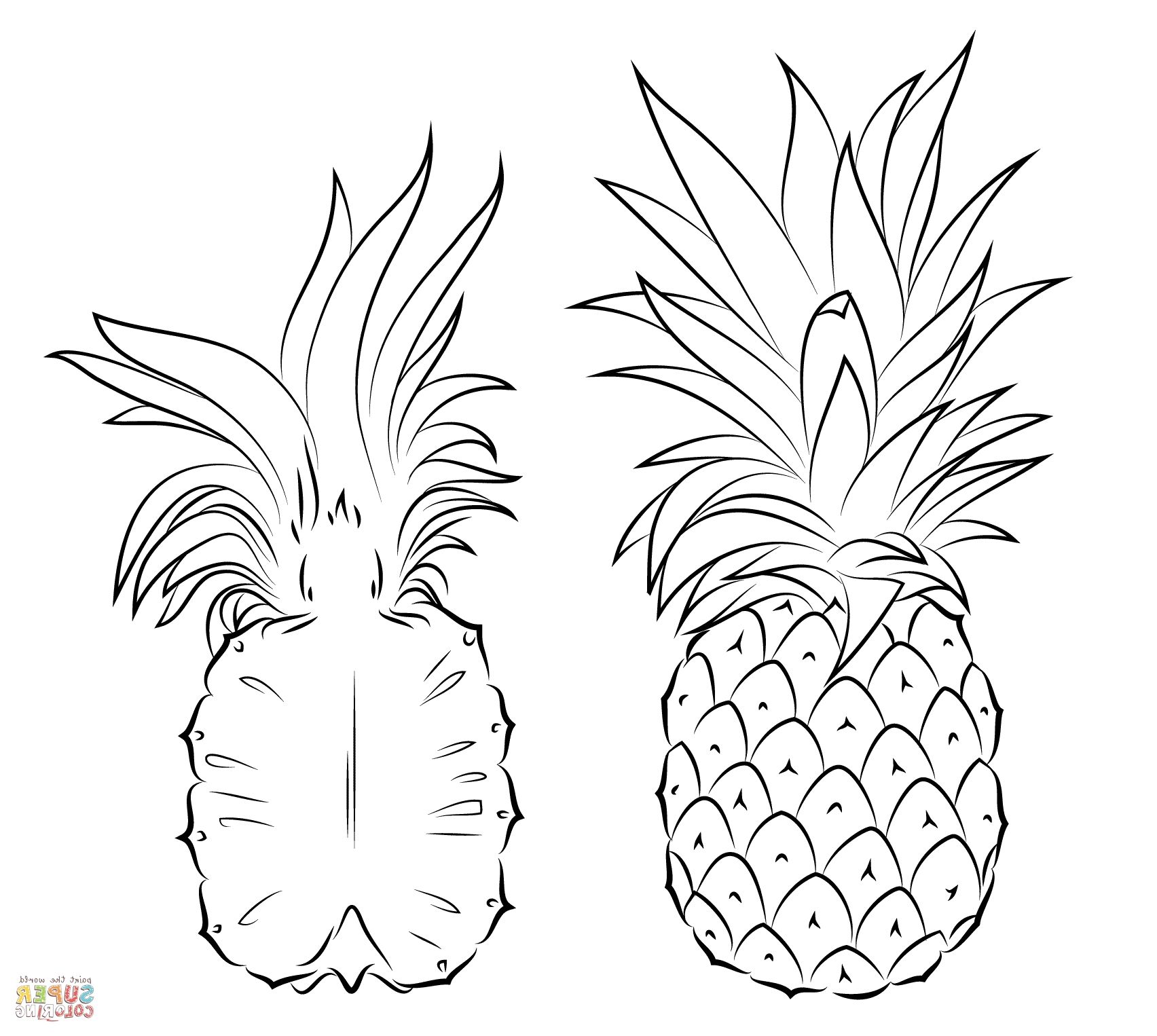 cute pineapple coloring page pineapple clipart winter cute pineapple coloring pages cute coloring page pineapple