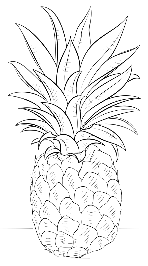 cute pineapple coloring page pineapple coloring pages to download and print for free coloring page pineapple cute