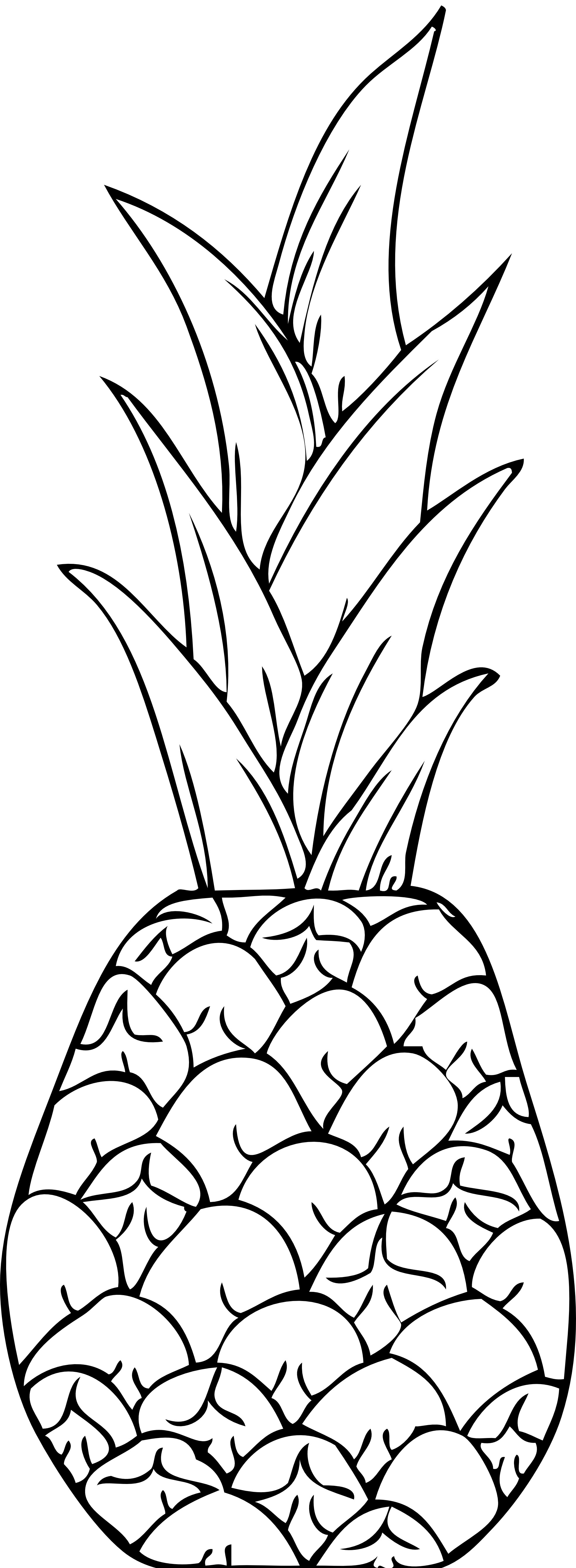 cute pineapple coloring page pineapple page tumblr coloring pages cute coloring pineapple page