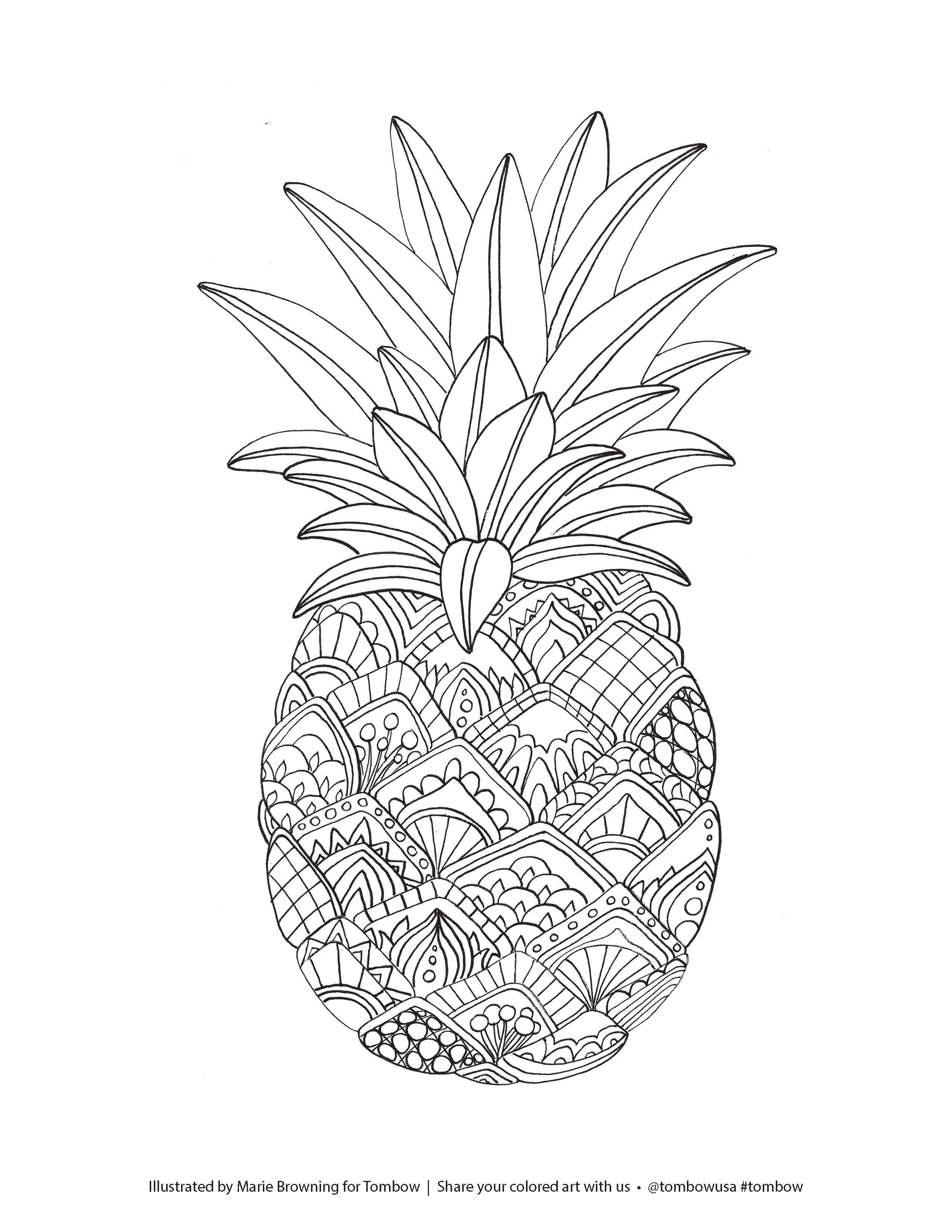 cute pineapple coloring page zentangle pineapple coloring page illustrated by marie page pineapple cute coloring