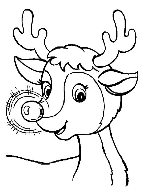 cute reindeer coloring pages a cute christmas reindeer with glowing nose coloring page cute coloring reindeer pages