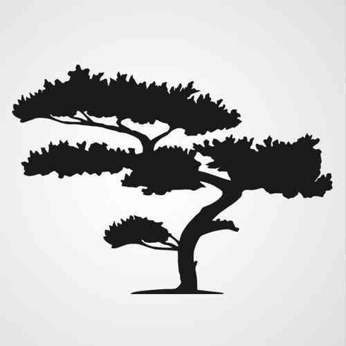 cypress tree silhouette cypress tree stencil pictures to pin on pinterest tree cypress silhouette