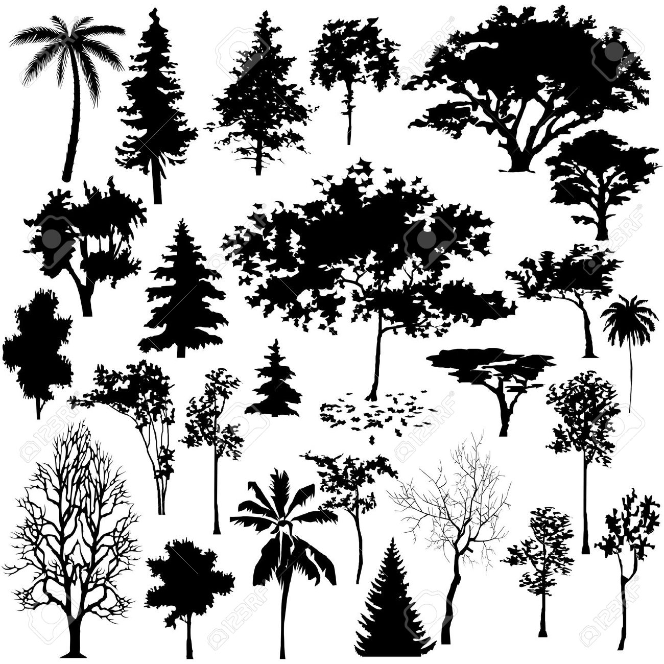 cypress tree silhouette cypress tree vector at getdrawings free download tree silhouette cypress