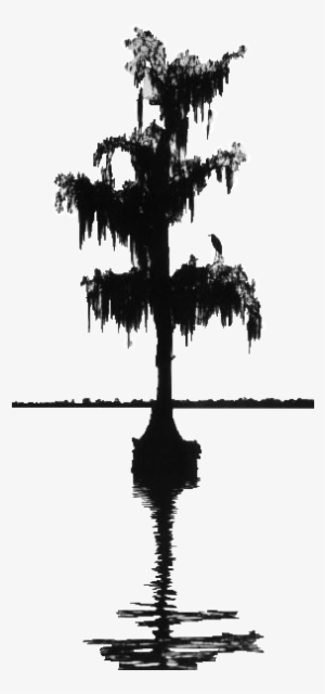 cypress tree silhouette cypress trees clipart 20 free cliparts download images tree silhouette cypress