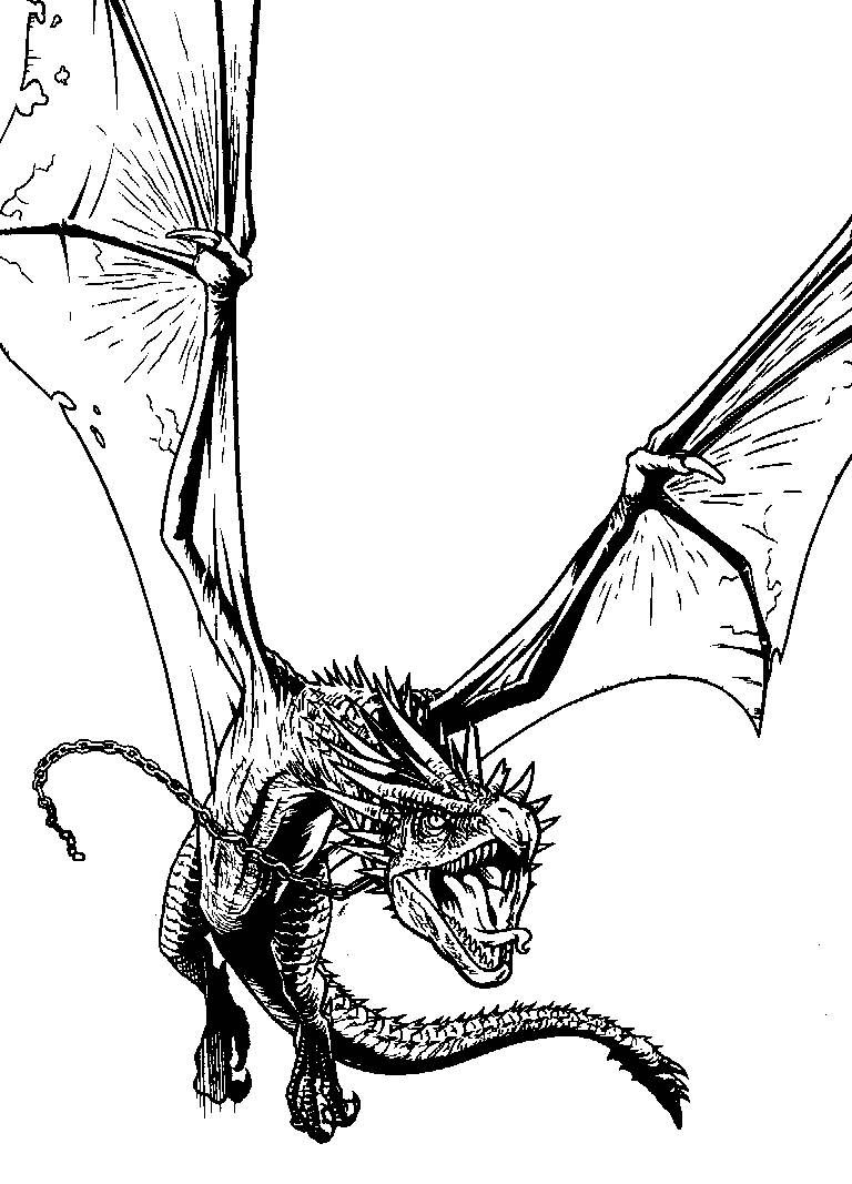 d is for dragon coloring page a6a476127689055626cd8404c06jpg 600427 dragon coloring is page dragon d for