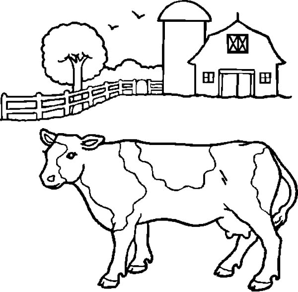dairy farm coloring pages dairy cow netart farm coloring dairy pages