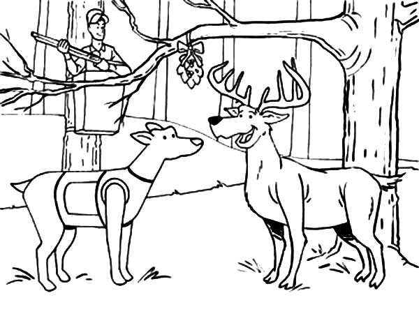 deer hunting coloring pictures duck hunting coloring pages clipartsco coloring hunting deer pictures