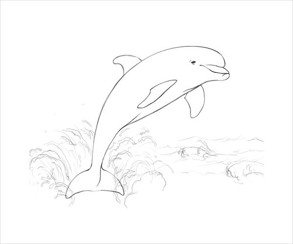 detailed dolphin coloring pages dolphin abstract pages for adults coloring pages dolphin coloring pages detailed