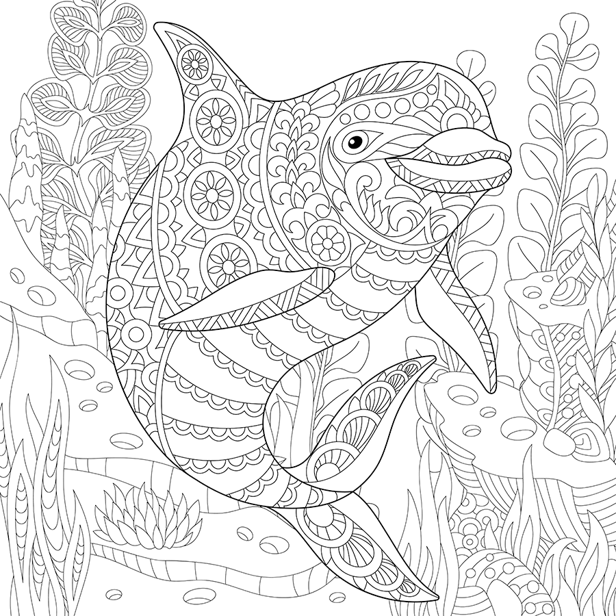 detailed dolphin coloring pages dolphin coloring pages for kids in 2020 dolphin coloring pages dolphin coloring detailed