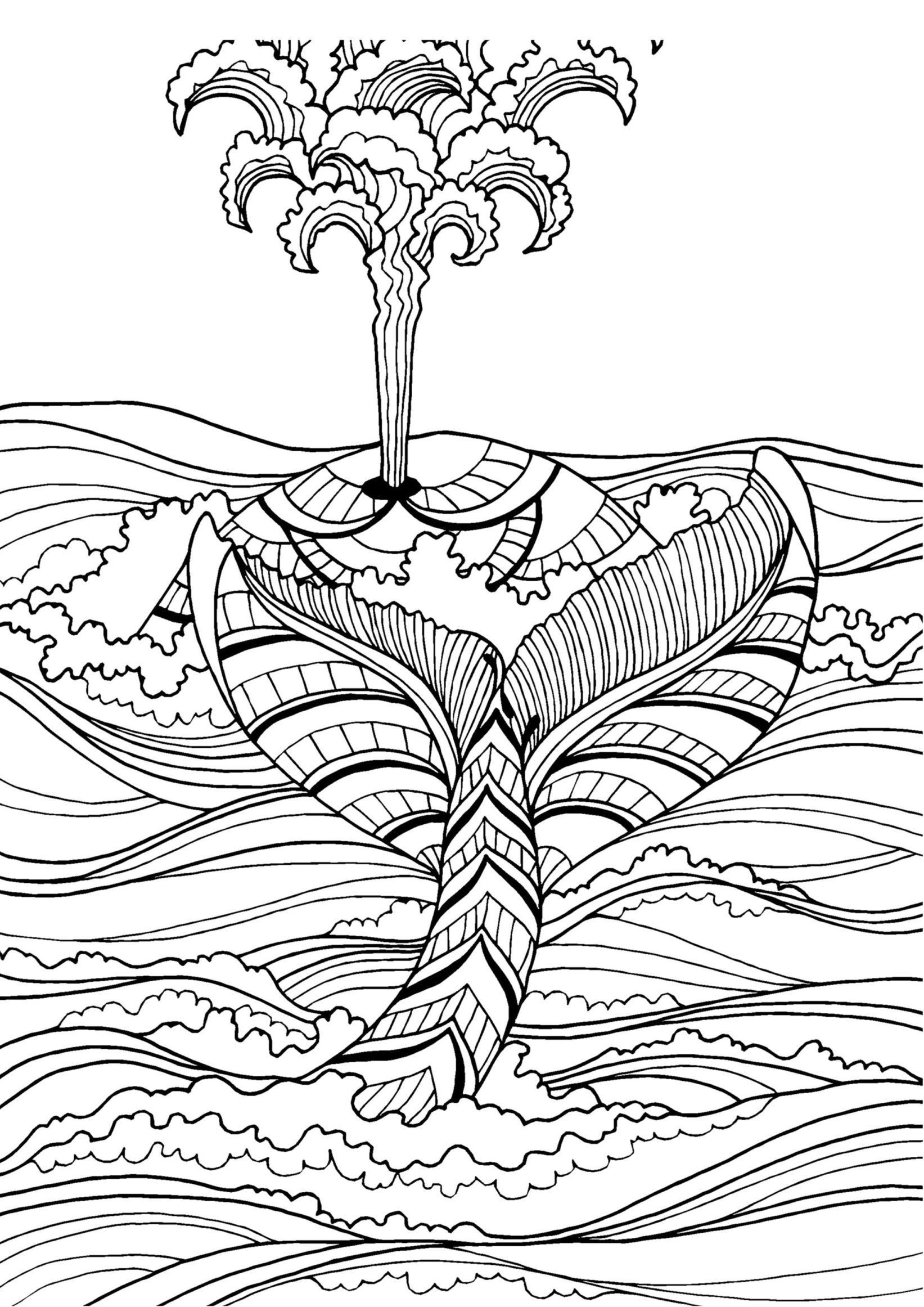 detailed dolphin coloring pages dolphin pictures to color bilscreen pages detailed dolphin coloring