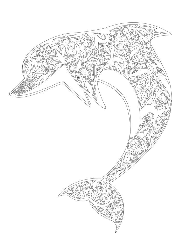 detailed dolphin coloring pages dolphin printable detailed pages for adults coloring pages pages dolphin detailed coloring