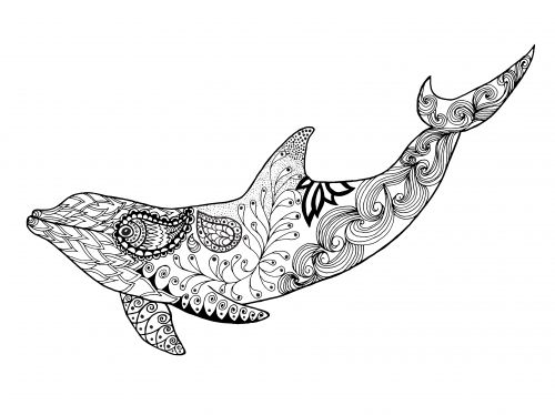 detailed dolphin coloring pages sea animal coloring pages coloring pictures of animals detailed coloring pages dolphin