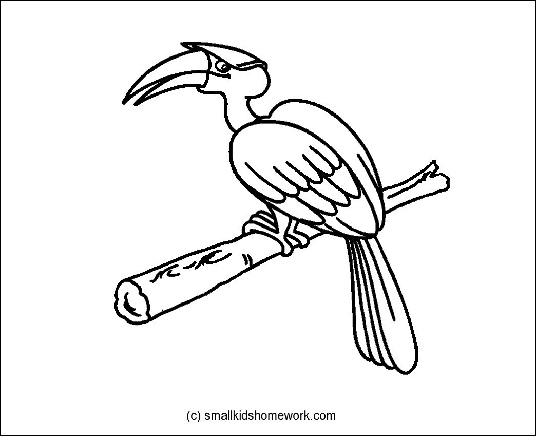 detailed dove drawing chitterings stock photos royalty free images vectors detailed dove drawing