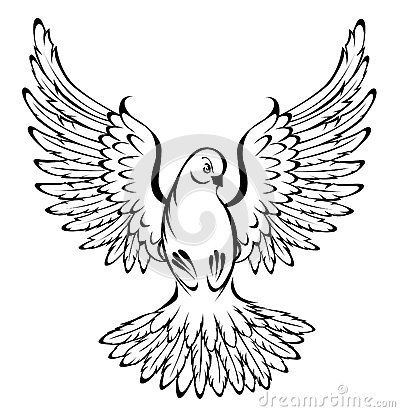 detailed dove drawing dove drawing outline at getdrawings free download detailed drawing dove