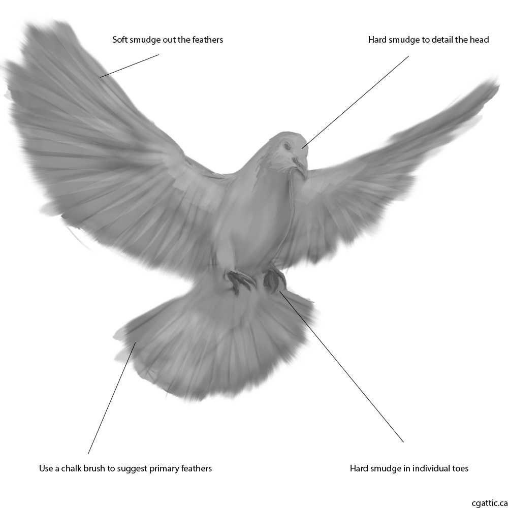 detailed dove drawing hewlett packard on behance in 2020 bird drawings tattoo drawing detailed dove