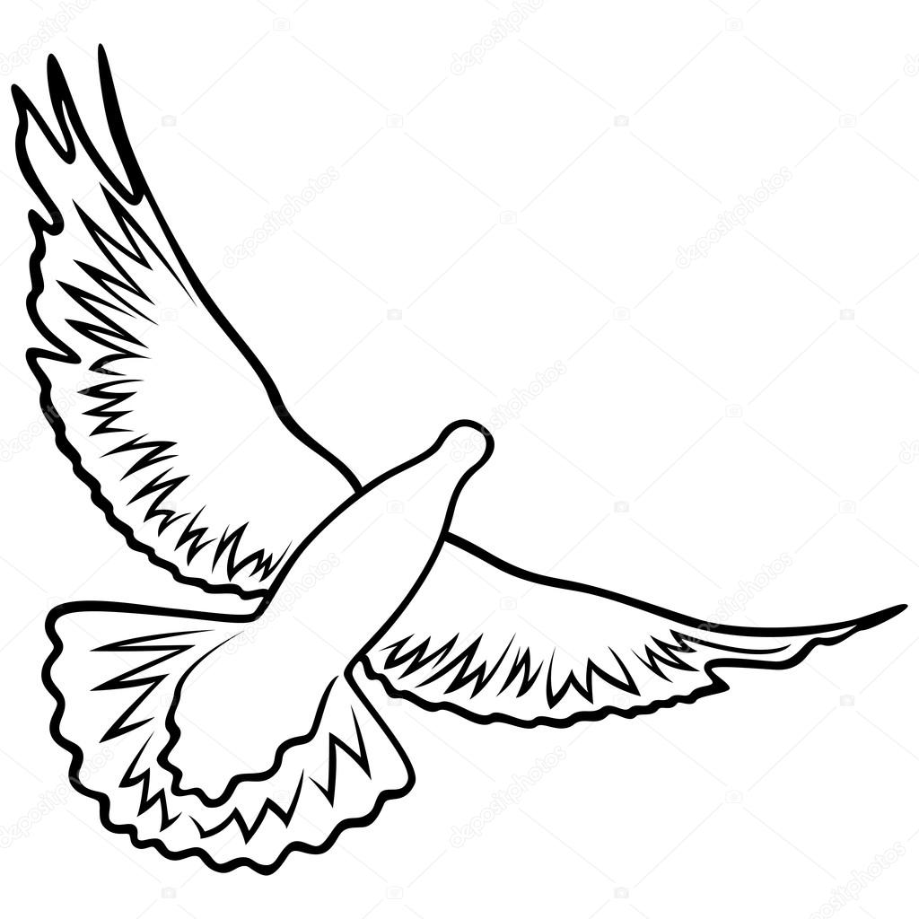 detailed dove drawing spot illustrations stipple drawings of birds ink rhythm detailed dove drawing