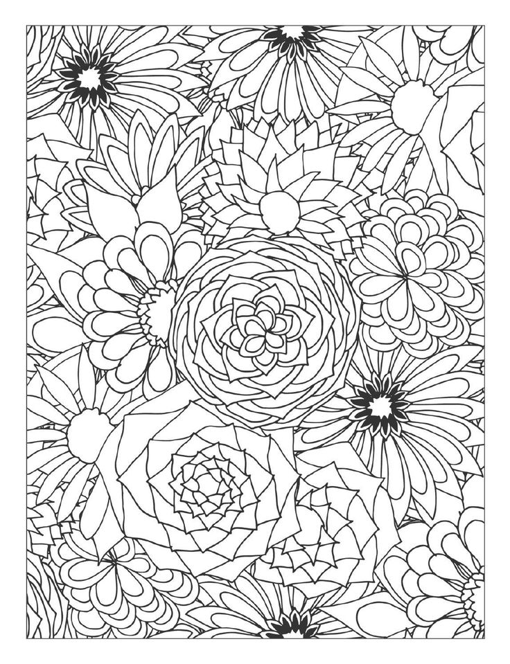 detailed flower coloring pages adult coloring page flower coloring pages detailed flower pages detailed coloring