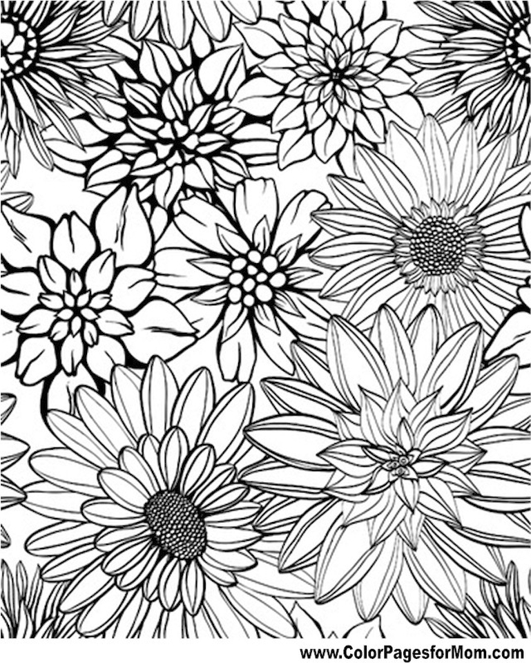 detailed flower coloring pages beautiful flowers detailed floral designs coloring book coloring detailed flower pages