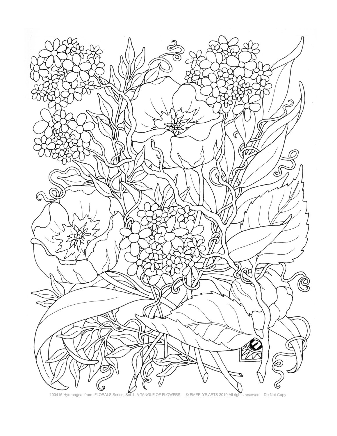 detailed flower coloring pages detailed flower coloring pages to download and print for free detailed flower pages coloring 1 1