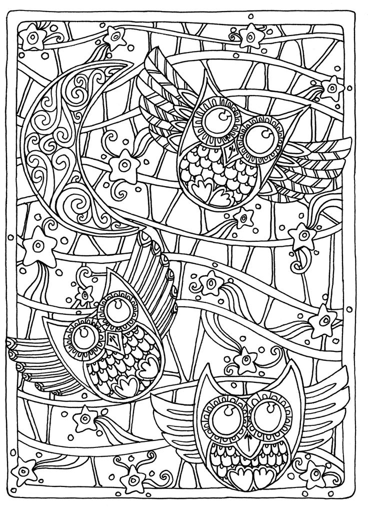 detailed pictures to colour in owl coloring pages for adults free detailed owl coloring detailed to in pictures colour
