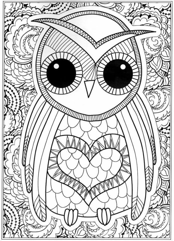 detailed pictures to colour in owl coloring pages for adults free detailed owl coloring to in detailed colour pictures