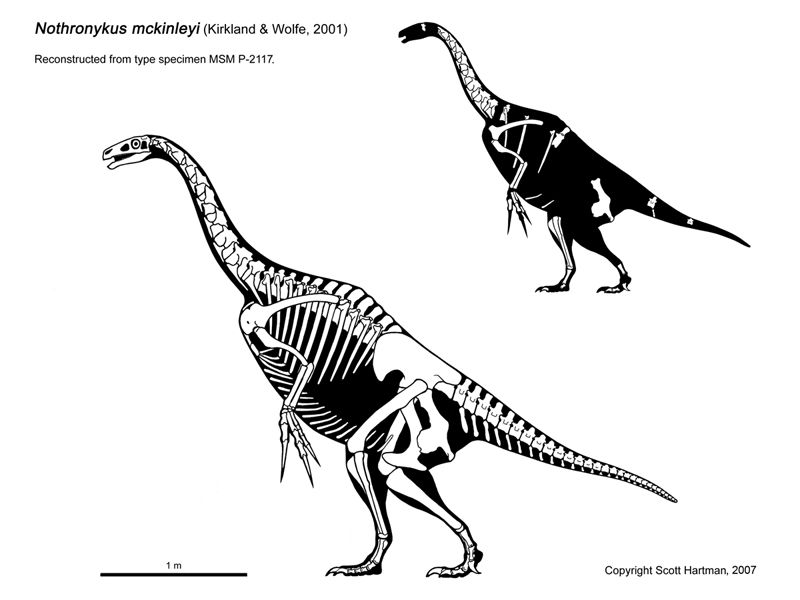 dinosaur 2000 dinosaur 2000 coloring pages free coloring pages 2000 dinosaur
