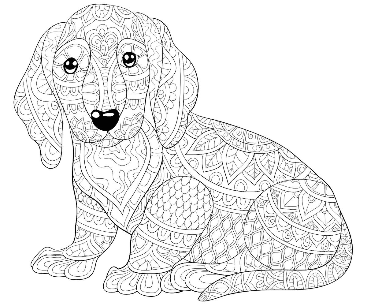 dog color page coloring pages dogs coloring pages free and printable dog page color