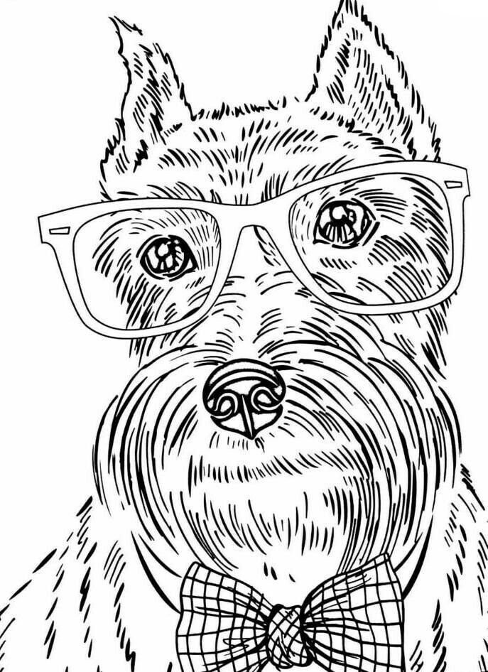 dog color page dog coloring pages printable coloring pages of dogs for page dog color