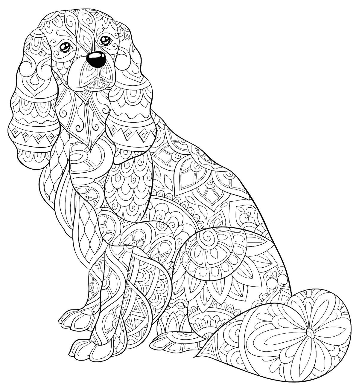 dog color page free printable dog coloring pages for kids dog color page