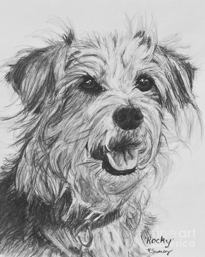 dog drawing shepherd dog pencil portrait drawing by mike theuer drawing dog