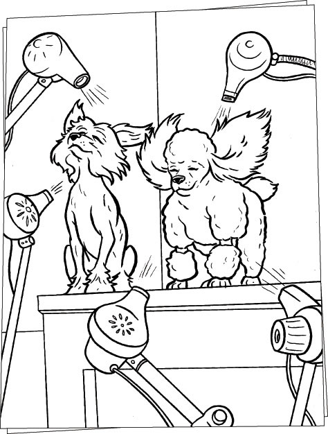 dog grooming coloring pages dog salon coloring pages hellokidscom coloring grooming pages dog