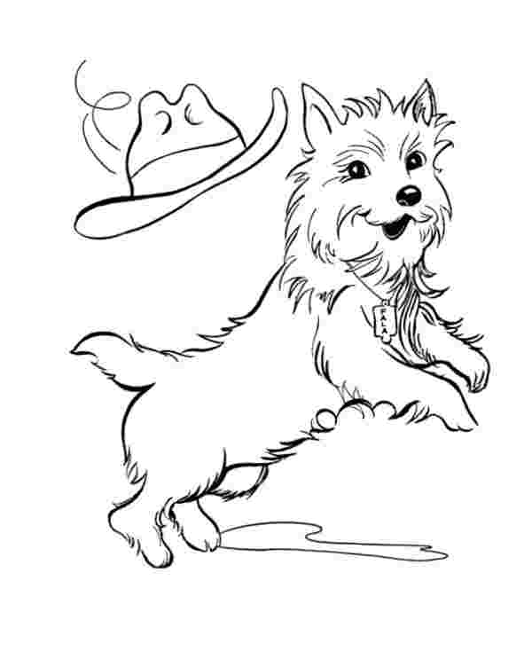 dog grooming coloring pages free dog washing cliparts download free clip art free pages grooming dog coloring