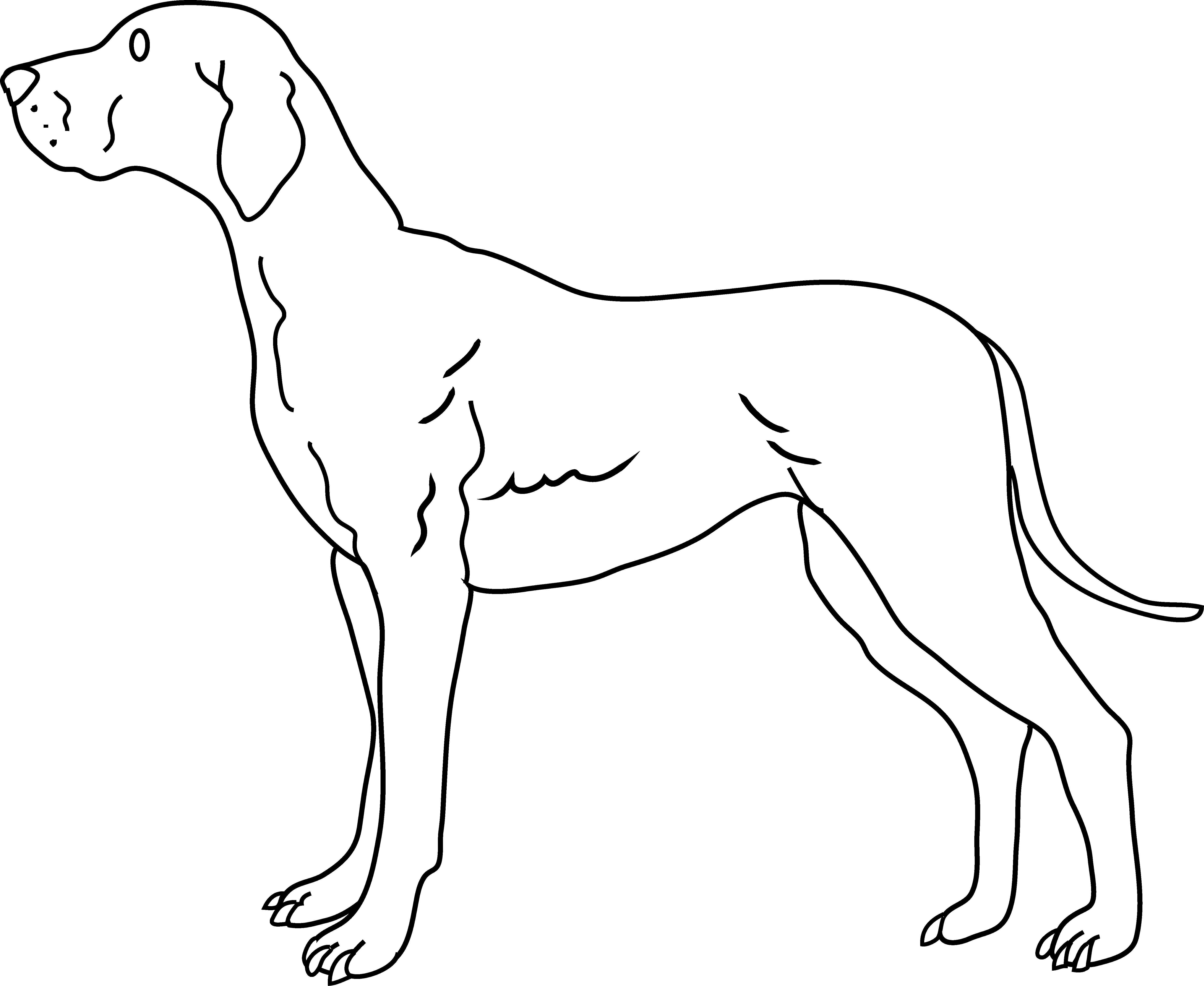 dog grooming coloring pages veterinarian girl cartoon cartoon coloring pages pages dog grooming coloring