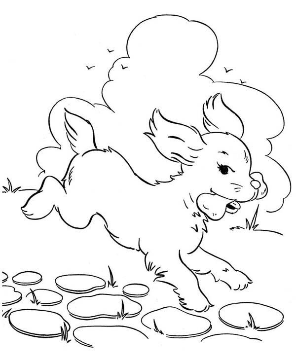 dog with bone coloring page dog eats delicous bone coloring page color luna dog dog coloring with page bone