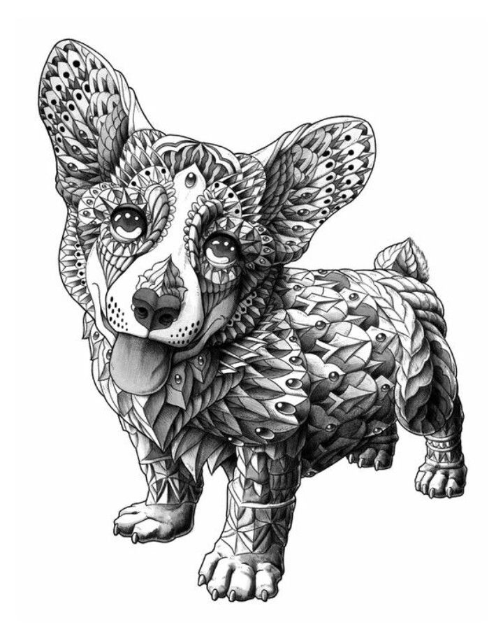 dog zentangle coloring pages zentangle corgie puppy puppy art dog coloring pages zentangle