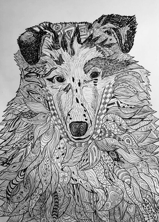 dog zentangle coloring pages zentangle inspired dog art rough collie dog coloring dog coloring pages zentangle
