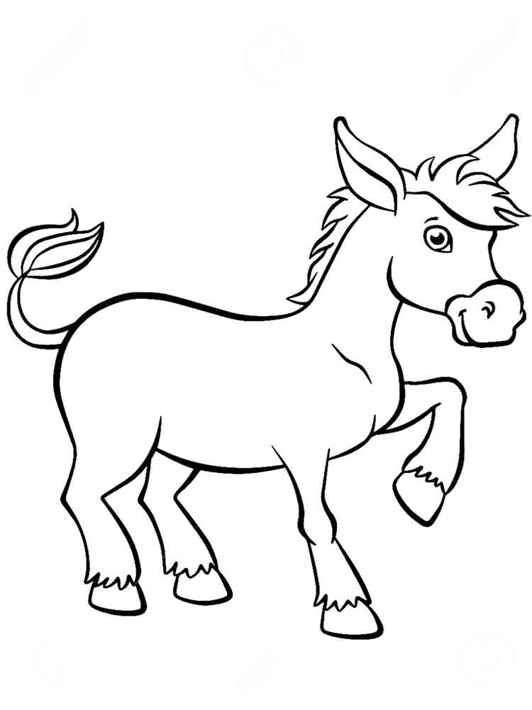 donkey pictures to print donkey coloring pages donkey pictures print to
