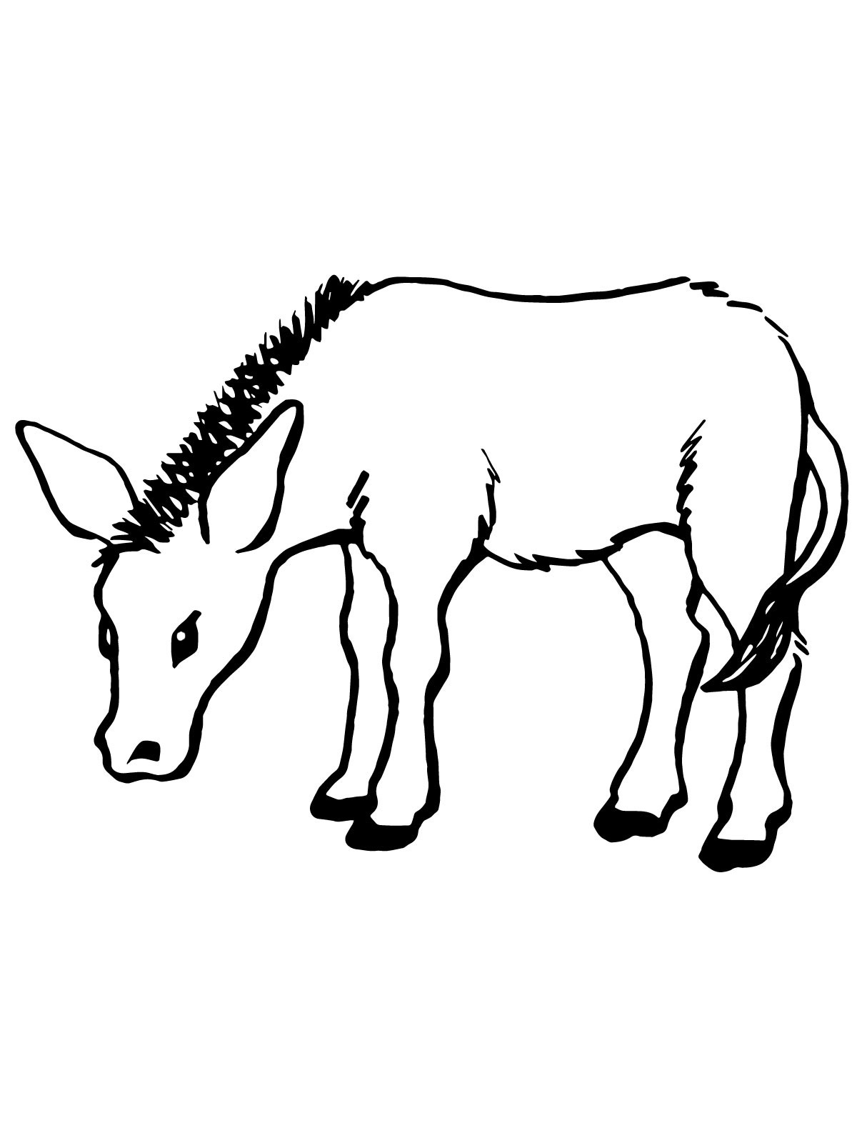 donkey pictures to print free printable donkey coloring pages for kids donkey print pictures to