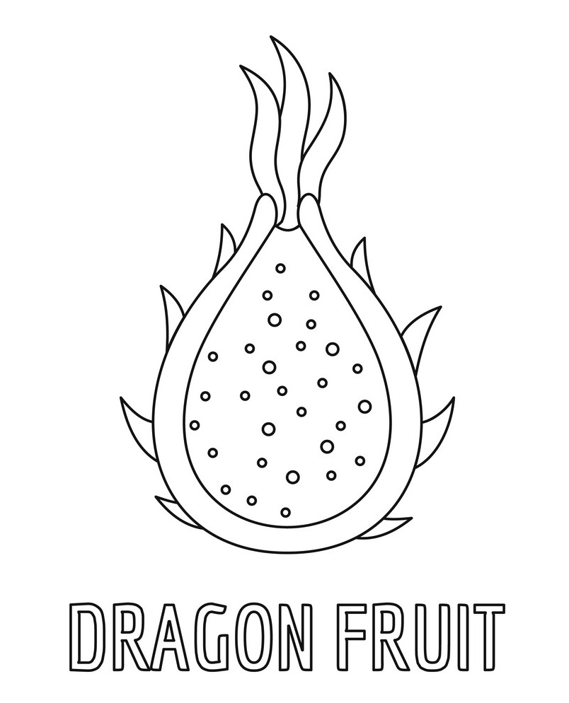 dragon fruit coloring printable picture with exotic dragon fruit coloring dragon fruit