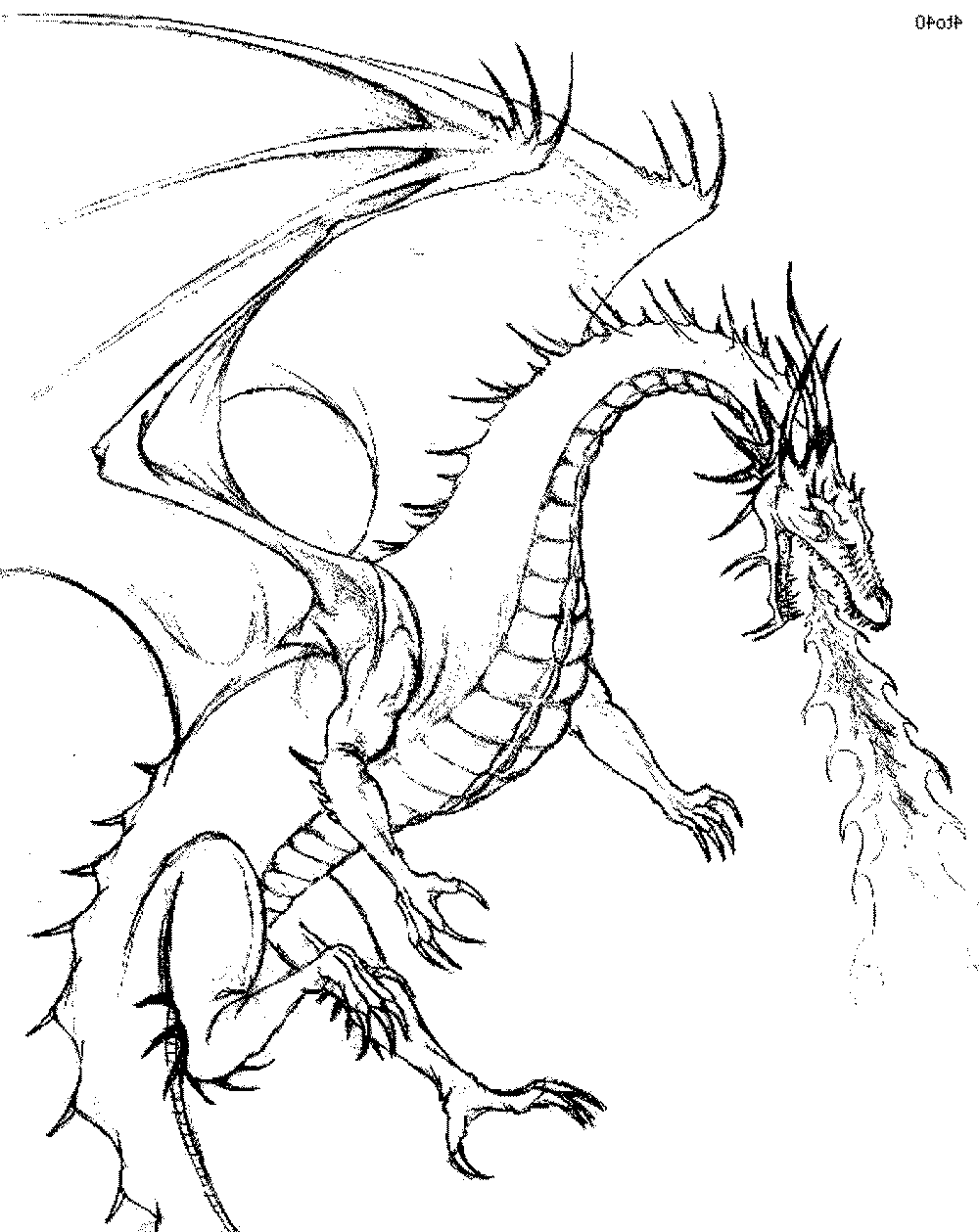 dragon to color color the dragon coloring pages in websites color to dragon