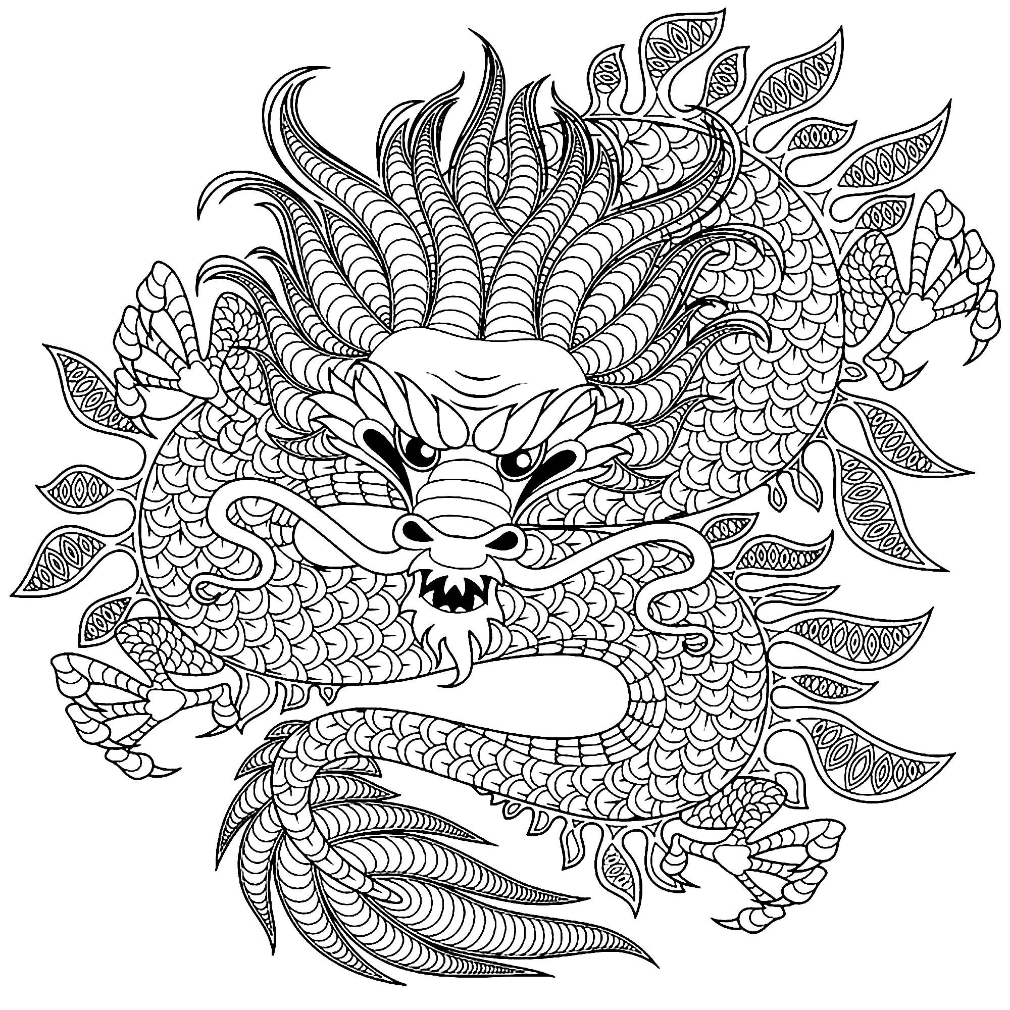 dragon to color dragon circular dragons adult coloring pages dragon color to
