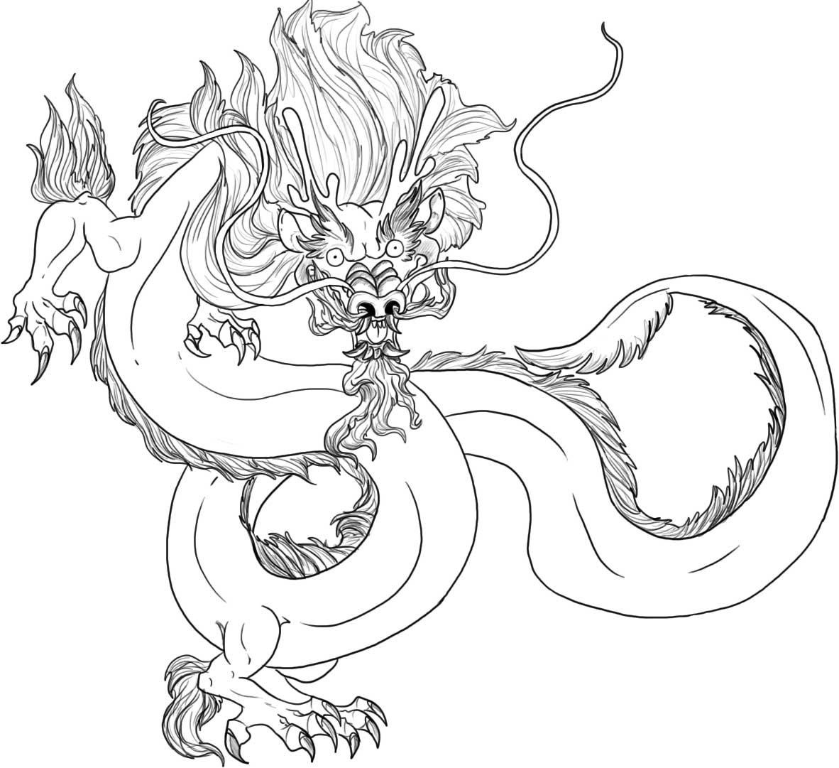 dragon to color dragon coloring pages for adults best coloring pages for dragon to color