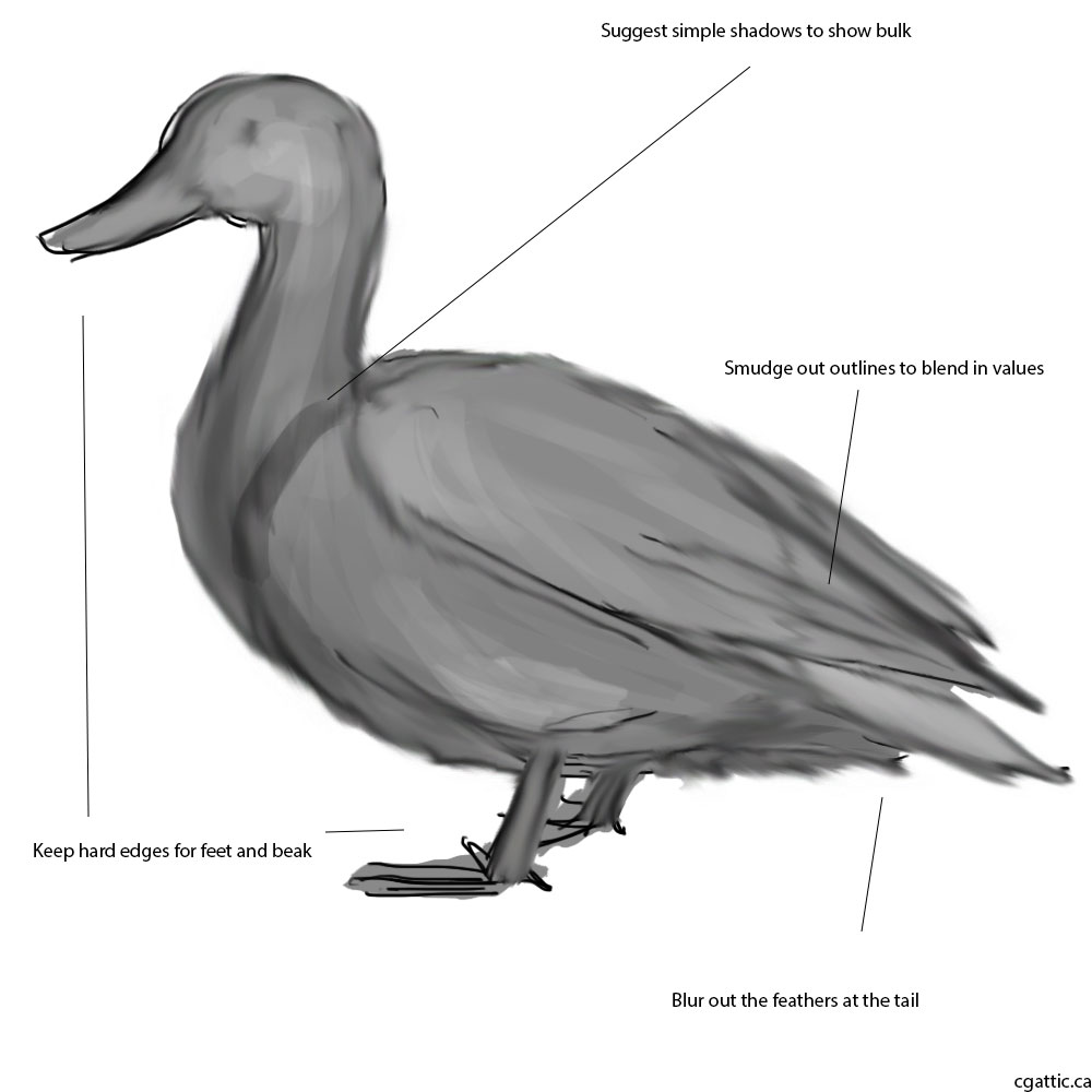 drawing a duck how to draw a duck draw central a duck drawing