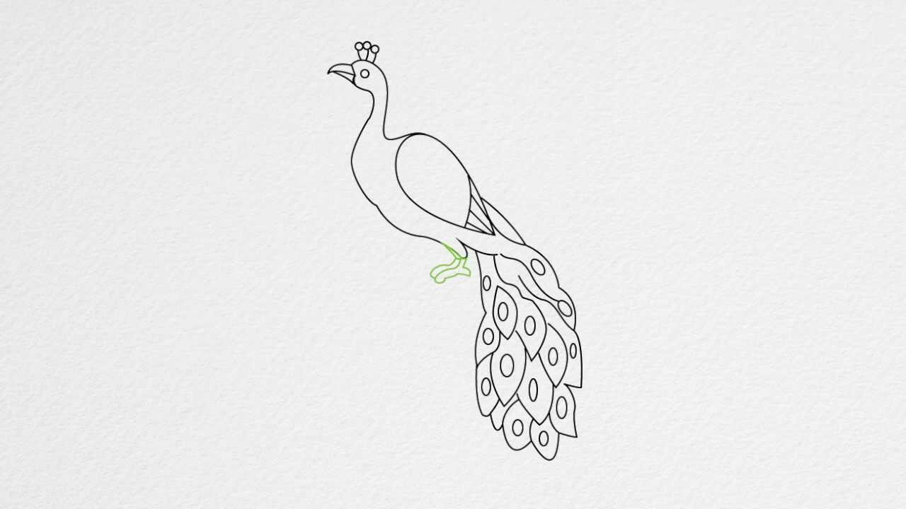 drawing a peacock step by step how to draw a peacock step by step youtube step peacock drawing a step by