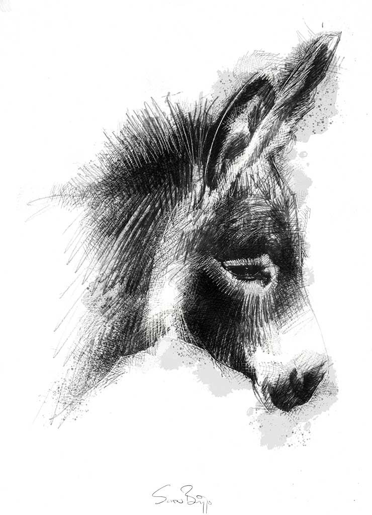 drawing of a donkey donkey by farfinmosker on deviantart donkey drawing a of