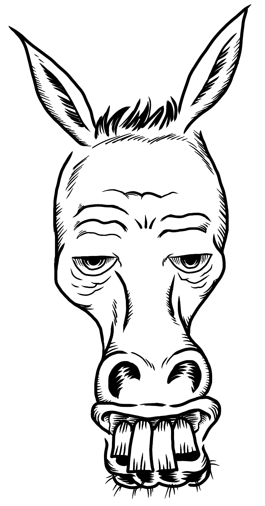 drawing of a donkey donkeys malcontent comics incorporated presents a drawing donkey of