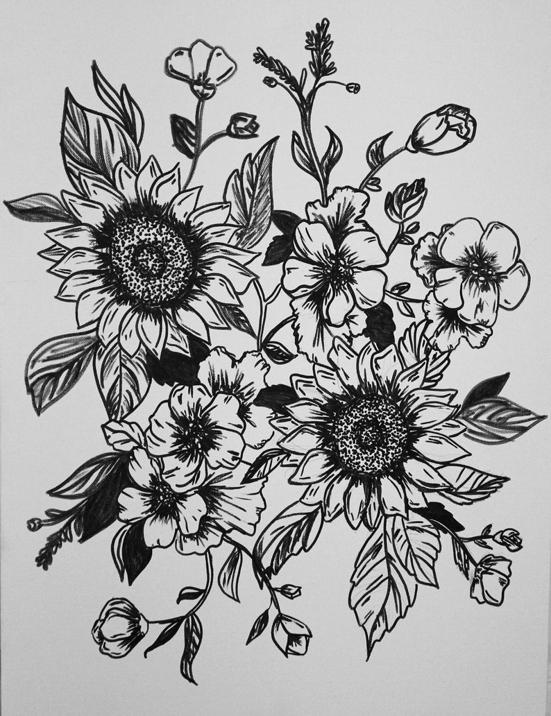 drawings of sunflowers sunflower drawing black and white free download on drawings of sunflowers