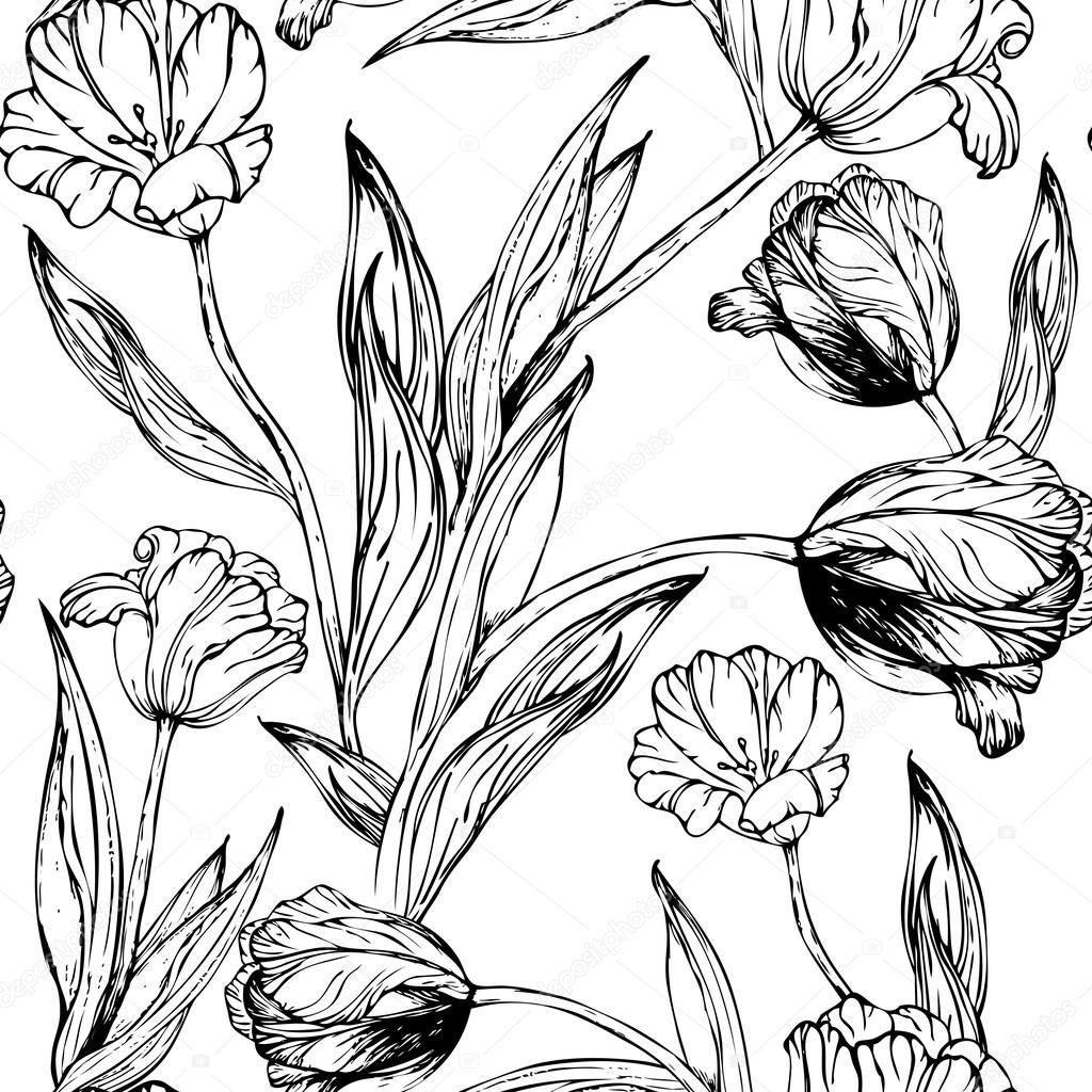 drawings of tulips tulips drawing clipart best tulips of drawings